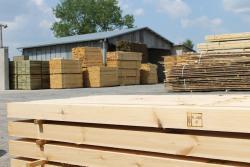 Eksport drewna